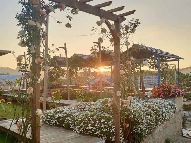 Khu vườn của The Kupid Homestay Đà Lạt